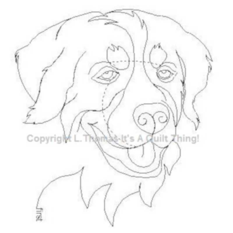 Bernese Mountain Dog-L01074
